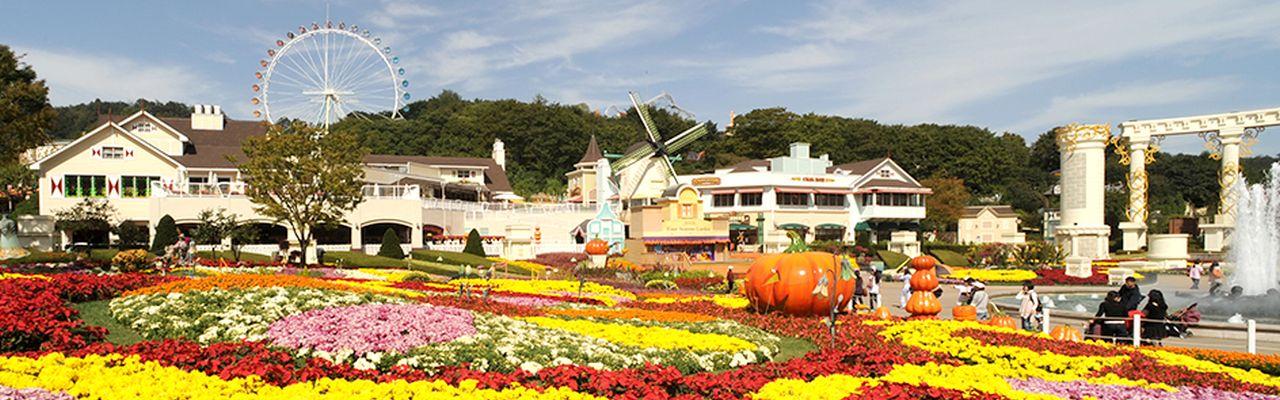 Korealainen huvipuisto toimii Pikkalan kaapeleilla